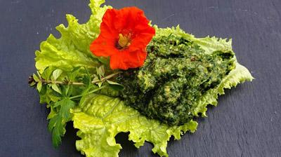 Chimichurri-auf-salatblatt-mit-blute-klein