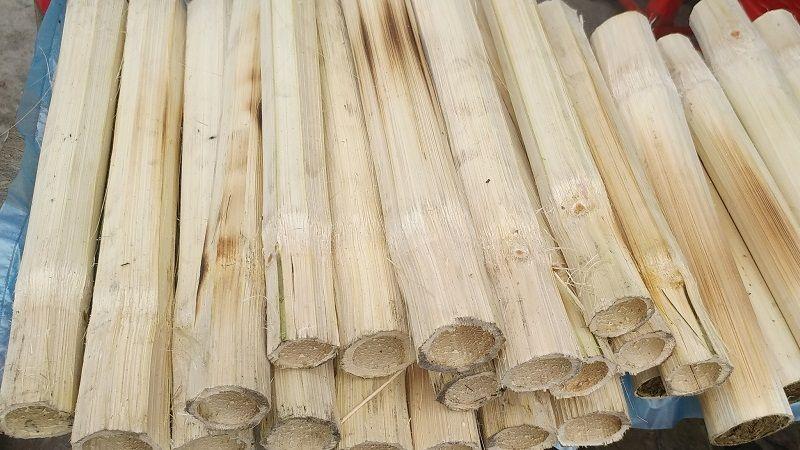 Bambus-Reis-Kopie-compressor