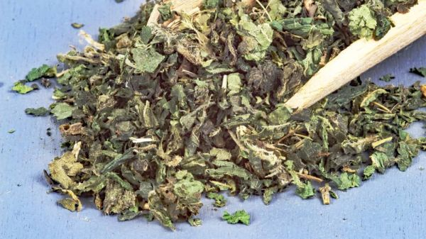 Bio-Brennesselblätter