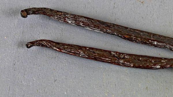 Vanillestangen Tahitensis im Glasröhrchen, 4-5g/Stück