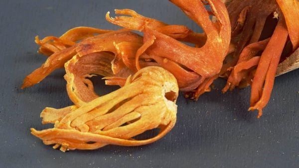 Muskatblüte (Macis) - Nutmegflower