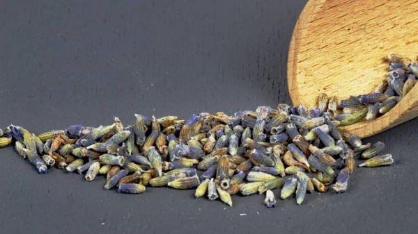 Lavendel Blüten 1 A - Qualität
