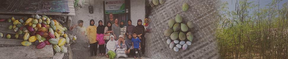 masawi_banner_entdeckungsreisen