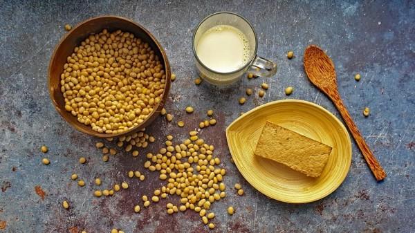 Sojaprodukte-Lebensmittellexikon-2-jpg-Comp